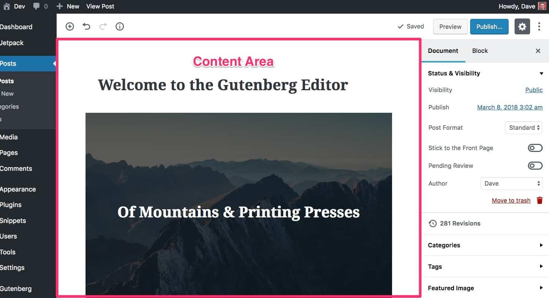 Gutenberg Content Area